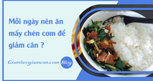 faq-moi-ngay-nen-an-may-chen-com-de-giam-can